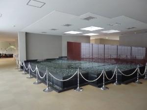 愛川室内池